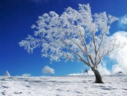 Σαν θα περάσει ο χειμών