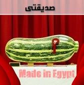 الصناعة المصرية الوحيدة