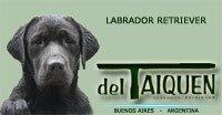 del Taiquen Labradores
