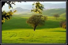Toscana di Augustin