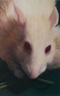 Manon Cleary