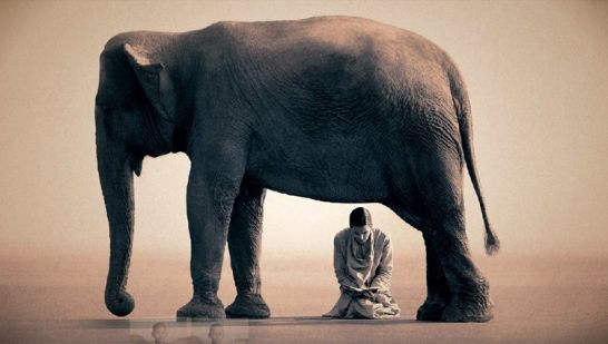 : GREGORY COLBERT! E           !