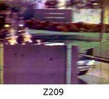 Z209.jpg
