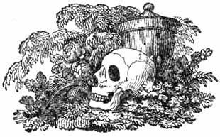 Celebrity Deathmatch Wiki | FANDOM powered by Wikia