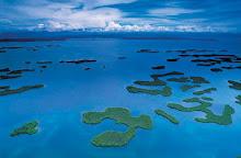 Planeta água- planeta vida