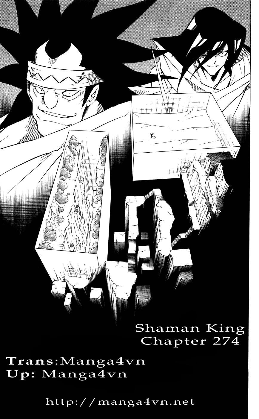 Vua Pháp Thuật-Shaman King chap 274 Trang 17 - Mangak.info
