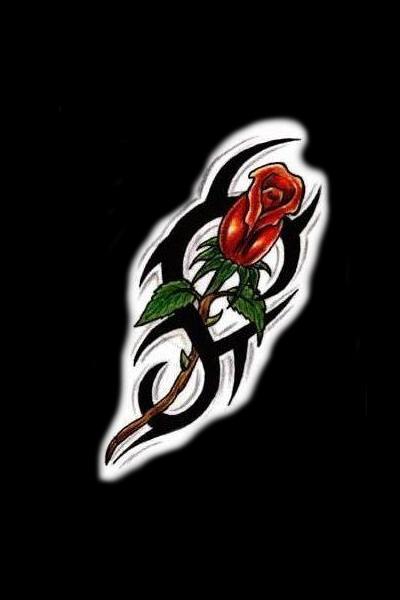 rose of jericho tattoo. Tattoo Sketches | Tattoos Rose