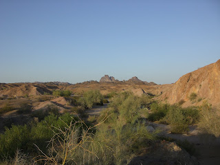 Picacho State Park