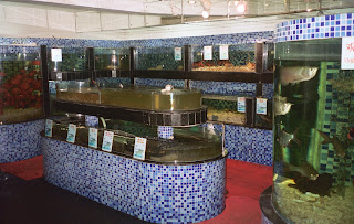 Restaurant Fish Tanks
