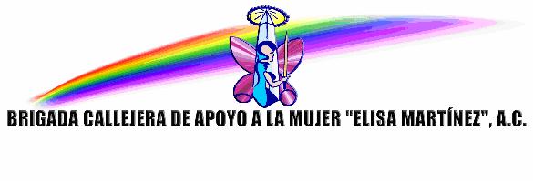 """Brigada Callejera """"Elisa Martínez"""""""