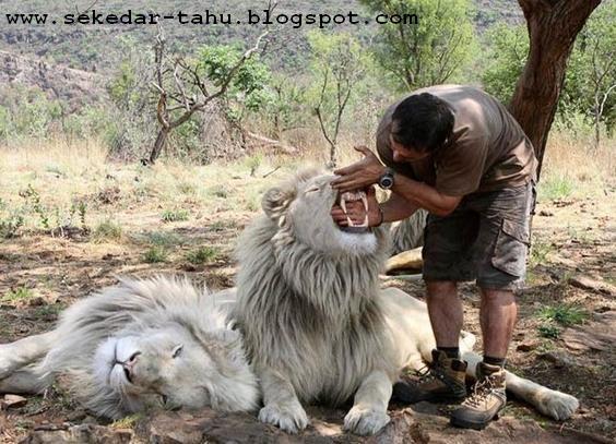 http://2.bp.blogspot.com/_6wWAvMOB4eQ/TMEHeFM-YGI/AAAAAAAAC3c/LAG07aacfbU/s1600/4.JPG