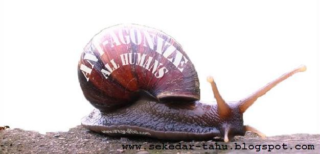 http://2.bp.blogspot.com/_6wWAvMOB4eQ/TMUDu3NnDDI/AAAAAAAAC30/UFI8R7_BInY/s1600/2.JPG