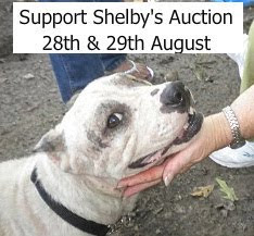 Be a part of Shelby's Auction!