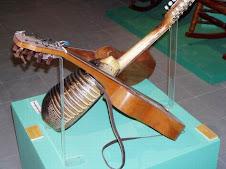 Armadillo Guitar