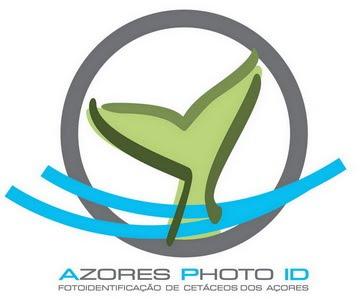 Fotoidentificação de Cetáceos dos Açores - Azores Cetacean Photo-ID
