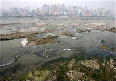 Polluted water in a China town