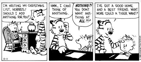 calvin and hobbes completes 25 years what amazing joy this kid and his
