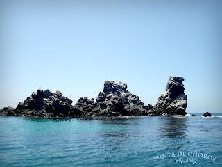 Punta de Choros