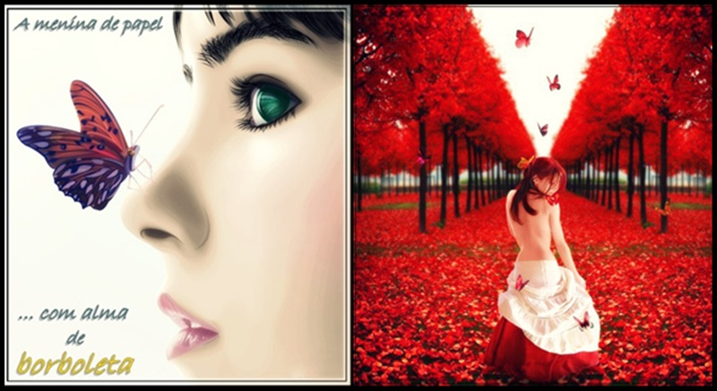 A menina de papel com alma de borboleta ...