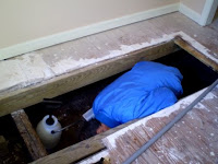 床下消毒と防虫工事