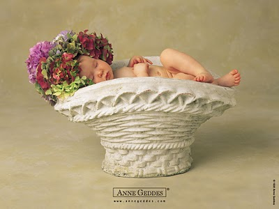 anne geddes wallpapers. anne geddes wallpapers