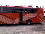 Door Bus DVS