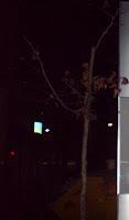 Ο πλάτανος στη πλατεία Χατζοπούλου..