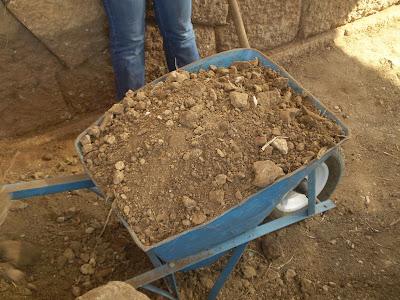 Ανασκαφές στις Οινιάδες