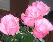 Rakastan ruusuja ja romantiikkaa sekä