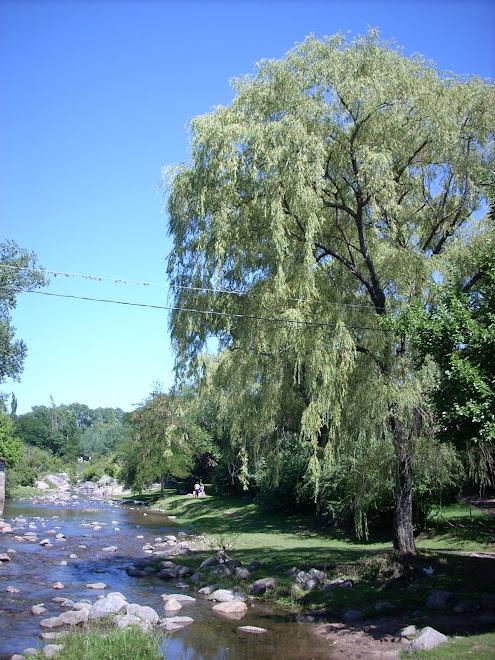 Río del Paraje Mi Hogar, en cuyas cercanías funcionó un hogar del Consejo del Menor (hoy cerrado)