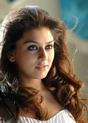 Hansika Motwani Hot Gallery(Exclusive Photos)
