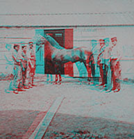 Victorian era 3-D photograph