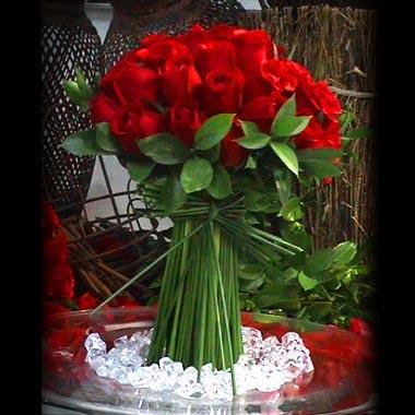 [Rosas+Vermelhas+2.jpg]