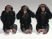 The Amway Unwise Monkeys