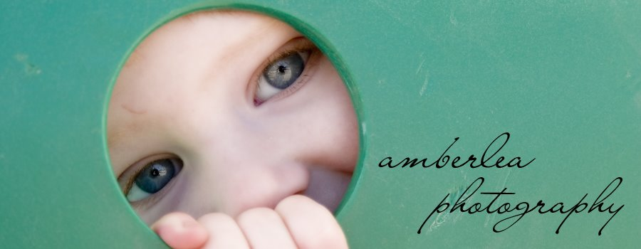 amberlea photography