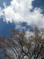 In den Himmel geguckt