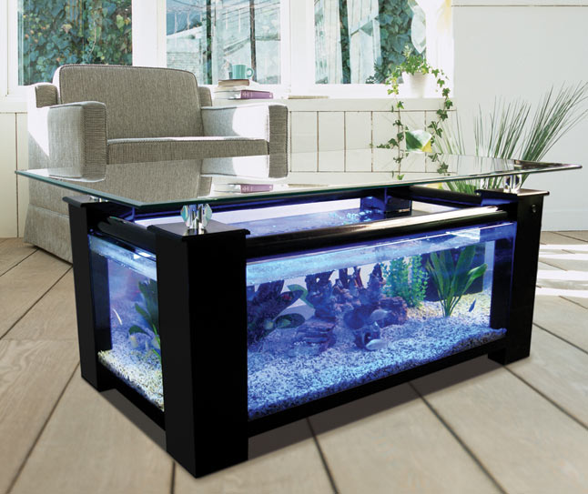 Aquarium Fish Tank Coffee Table 646 x 543