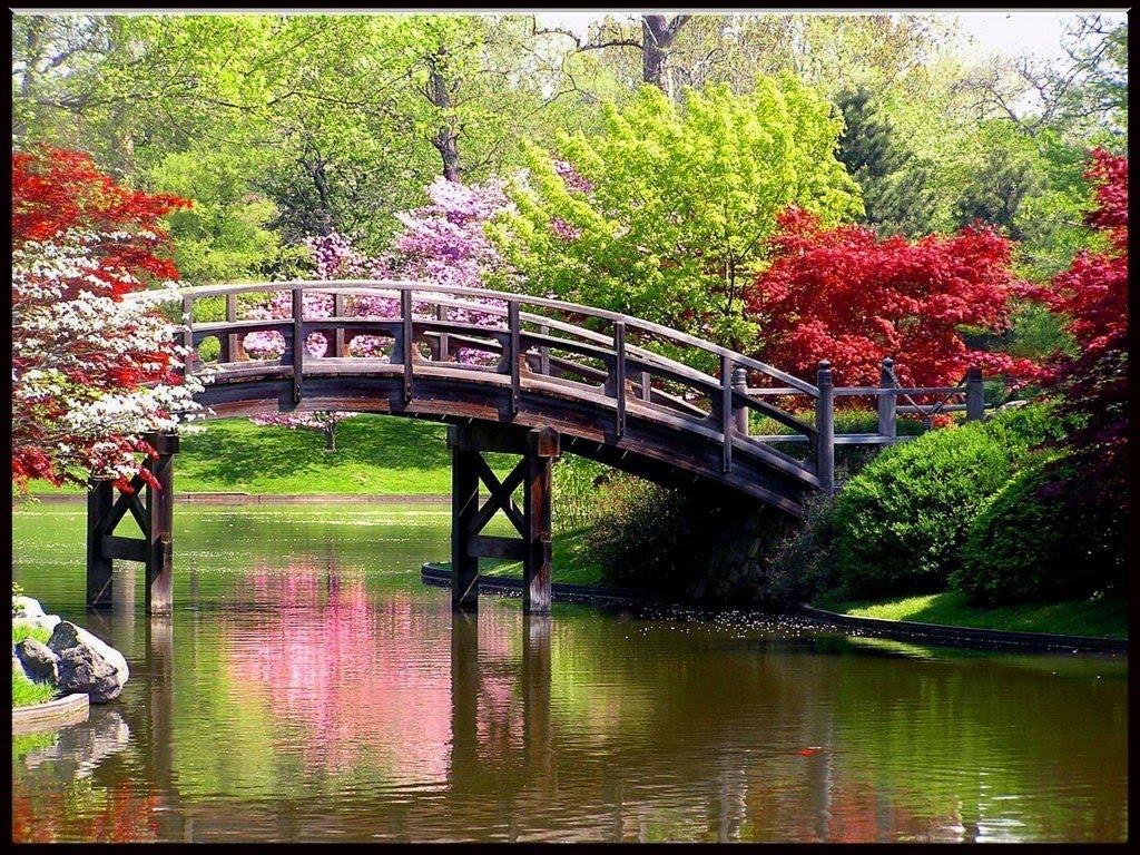 Fotos de la primavera hermosas imagenes taringa for Fondo de pantalla primavera