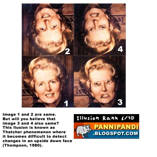 top 10 latest list of illusions - thatcher optical illusion