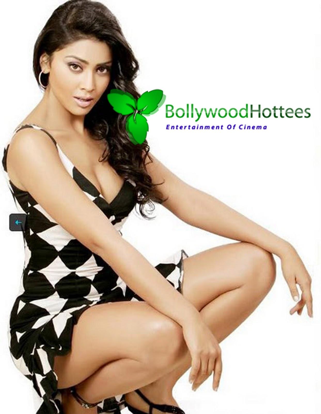 shriya saran hot ~ bollywood hottees hot wallpapers