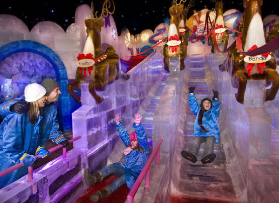 its best of florida christmas featuring ice featuring twas the night before christmas experience 9 degrees of thrills and chills - Christmas At Gaylord Palms