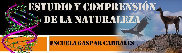 Estudio y comprension de la naturaleza