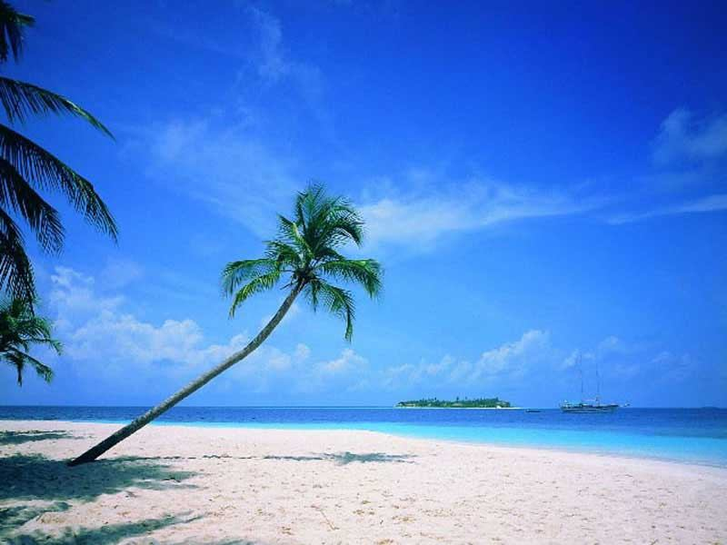 mexico beaches wallpaper. eaches wallpapers gallery