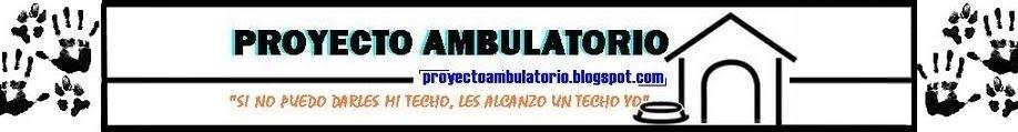 PROYECTO AMBULATORIO