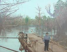 Blackshear's Ferry, ca. 1930s.
