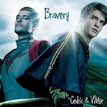 Cedric Diggory and Viktor Krum