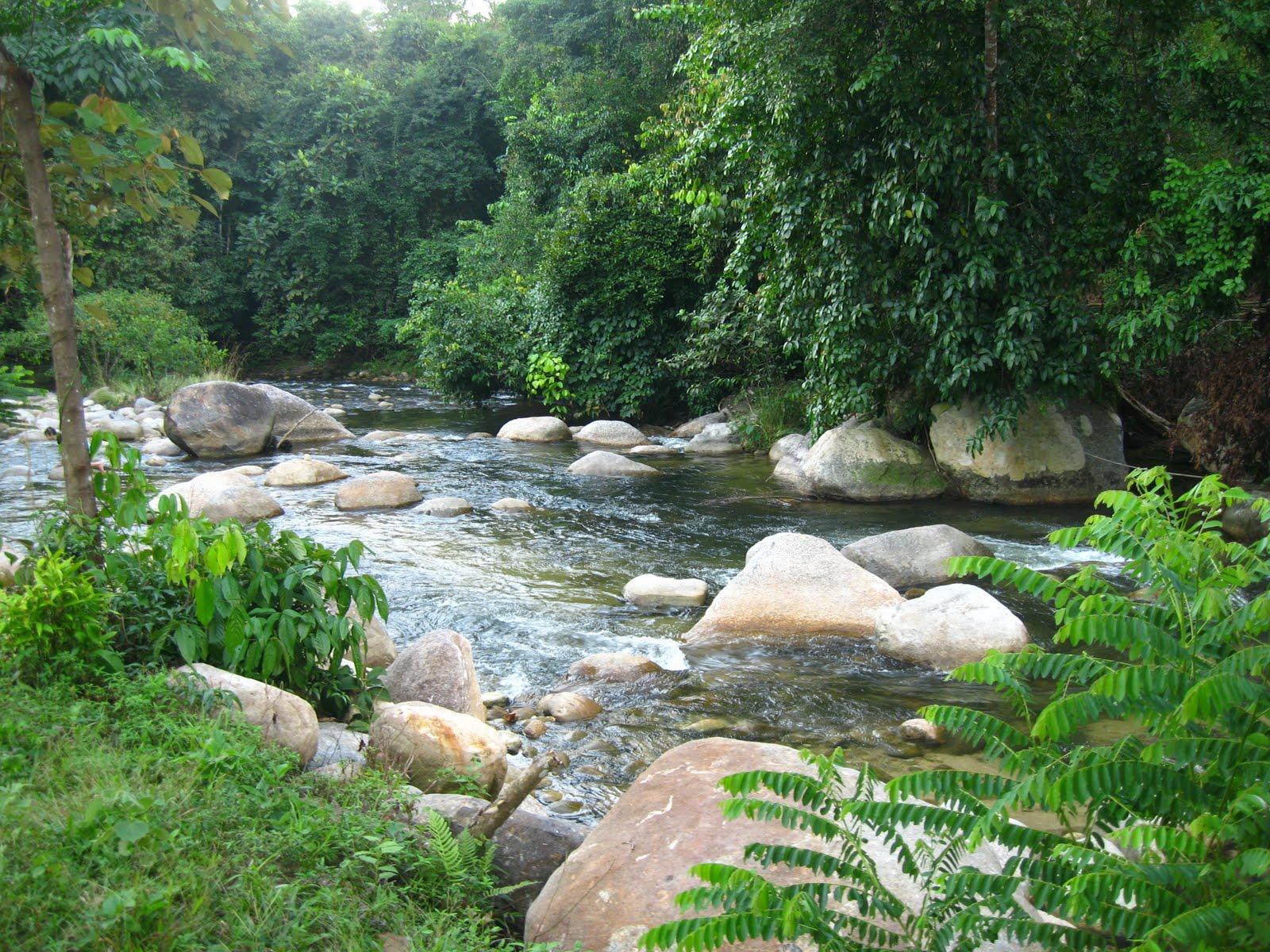 sungai sedim kulim malaysia Great savings on hotels in kampong ulu sedim, malaysia online good availability and great rates  kulim (near kampong ulu sedim)  sungai petani is 17 miles.