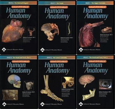 Aclands anatomy videos