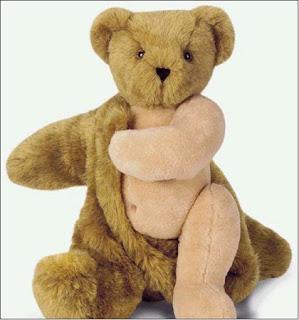 teddy bear in dressing gown
