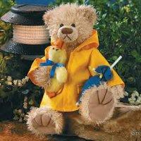 teddy bear in raincoat